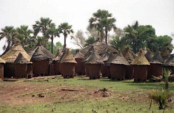 Берег Слоновой Кости (Кот-дИвуар)