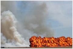 Международный день предотвращения эксплуатации окружающей среды во время войны и вооружённых конфликтов