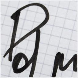 Автограф «Дельфина» Барнаульскому городскому порталу