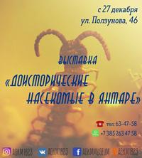«Доисторические насекомые в янтаре» в Барнауле