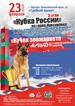 3 этап кубка России по гонке – буксировке в Барнауле